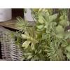 Set 3 mazzi di piante grasse artificiali